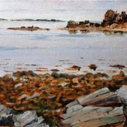 2021-07-24 Mossyard & The Isles of Fleet