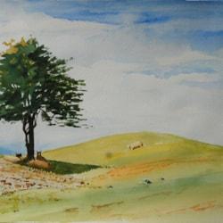 2021-08-29 Chosen Tree