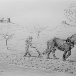 20210321_Feldarbeit mit Pferd Arta