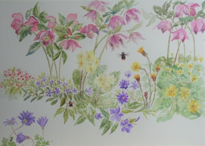 Spring flowers and bumblebees