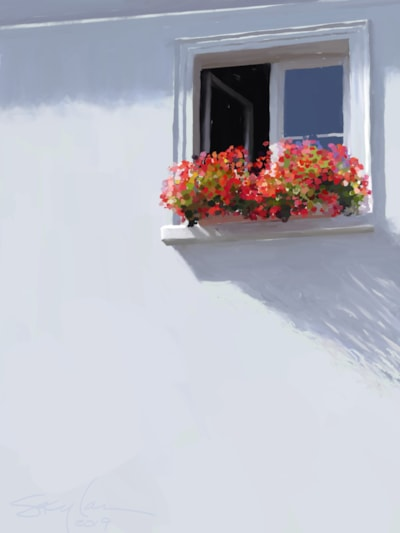 WindowBox, Geraniums