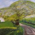 The Lane, Saron