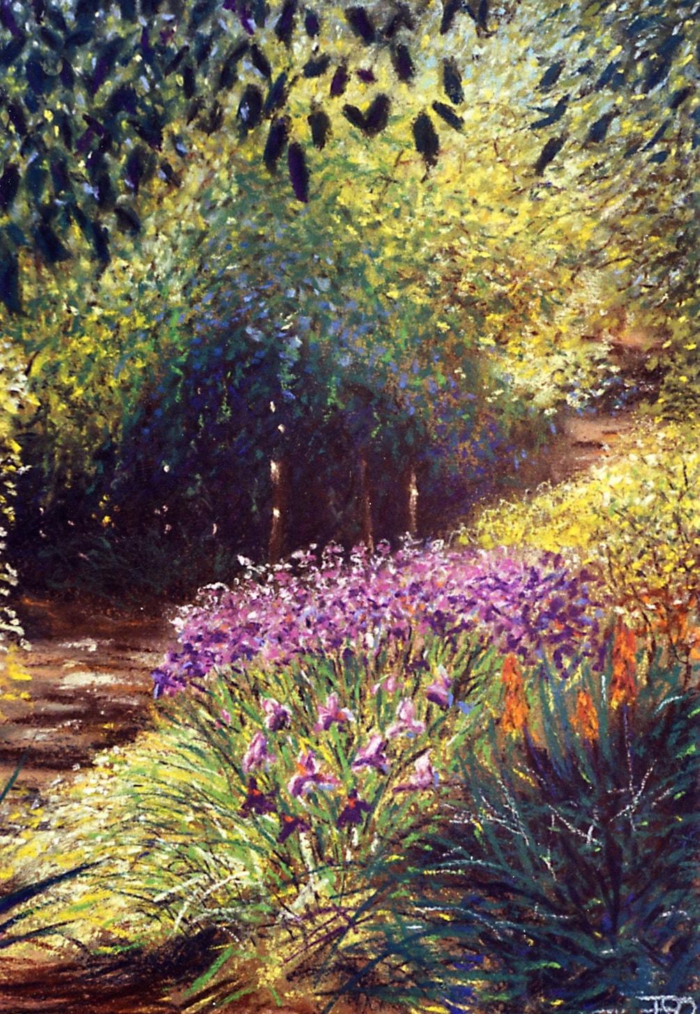 Iris in the Sunken Garden