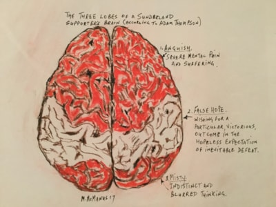 The three lobes of a Sunderland supporter's brain.