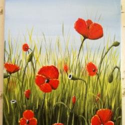 Poppies. 11.11