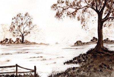 Mist across the fields