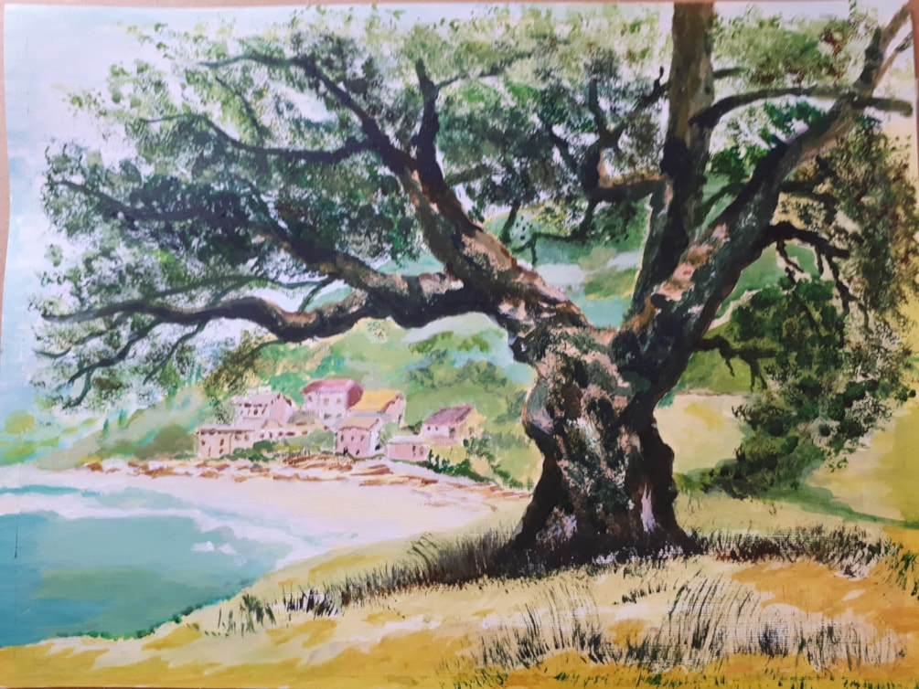 Mediterranean tree