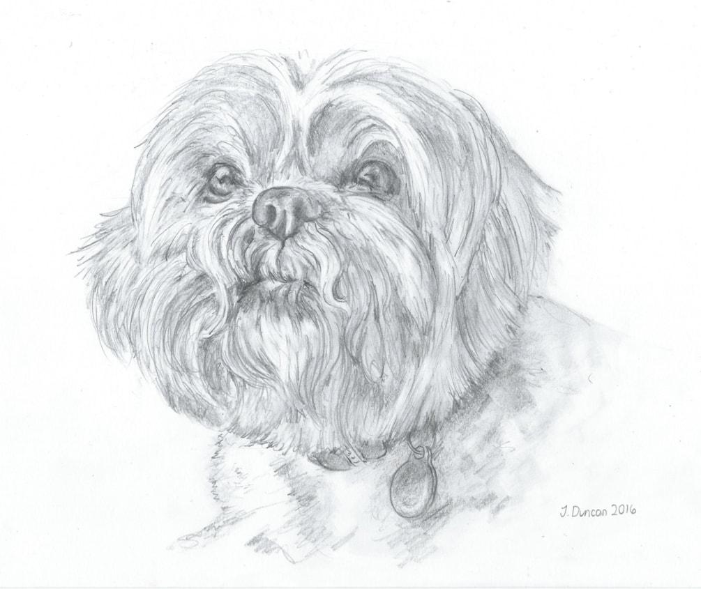Portrait of Suki