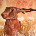 Startled Hare (2)