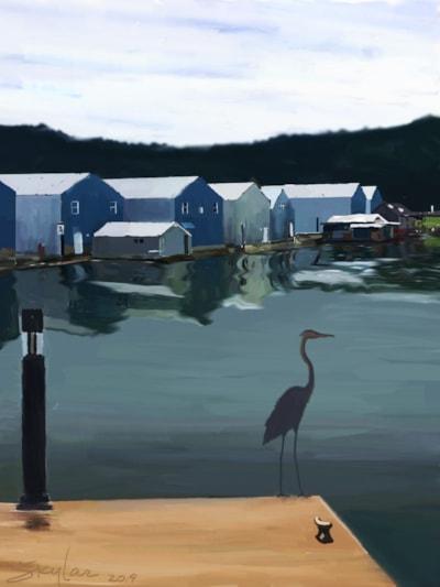 Docks & Wharfs & Herrons, Oh My!