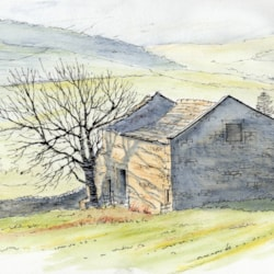 Sketch of a sunlit derilict barn in Upper Wharfedale