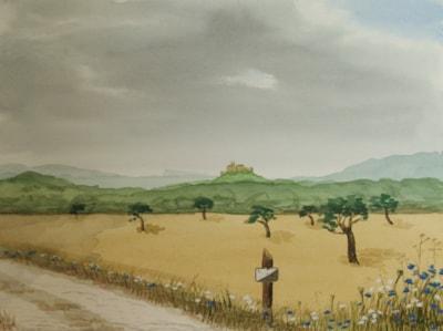Mallorca Summer Landscape