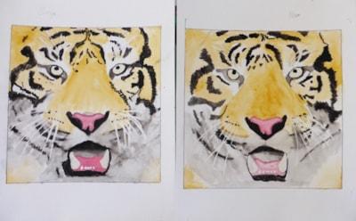 Tiger Lesson