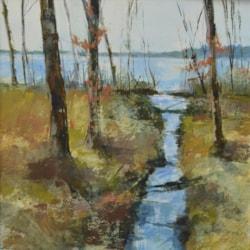 Spring Stream.  Barnsdale Woods.