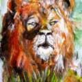 The Lion.....
