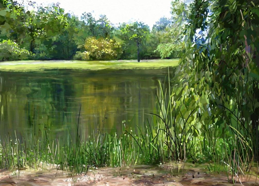 Woodland's Lake 2 (Series)