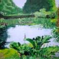 Crook Hall Pond
