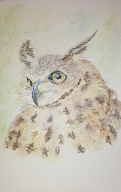 Kerry Bennett Eagle owl from april/may issue