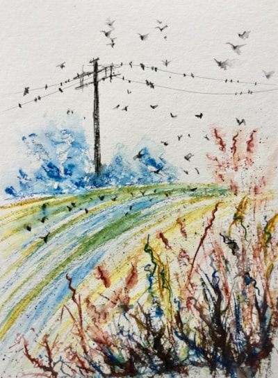 Rooks Gleaning