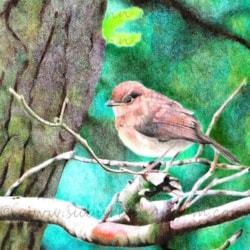 Poor Little Sparrow (68cm x 60cm Framed) - Derwent Artists' and Coloursoft on Hahnemuhle Andalucia 500g board