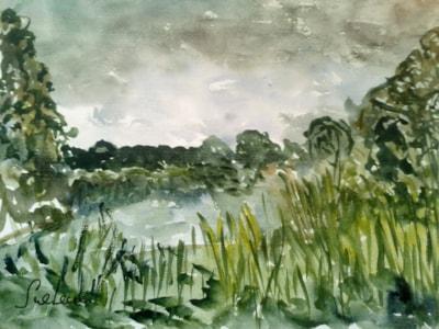 Wiltshire watermeadows