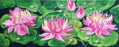Water lilies .