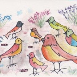 Rebecca Birds :-)