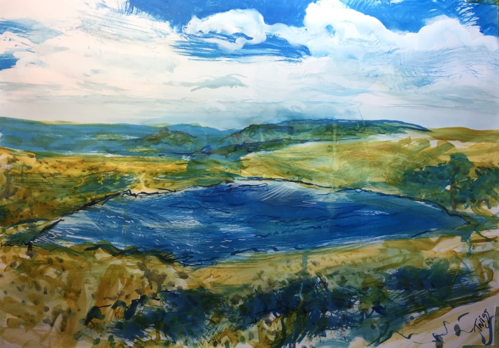 The Roaches from the Mermaids pool in blue white and gold.