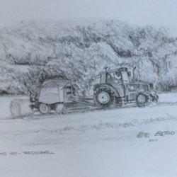 Making Hay - Tregoodwell