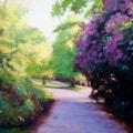 Spring at Wyndley Gate