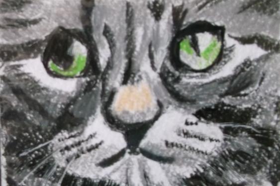 Cat 3 Miniature
