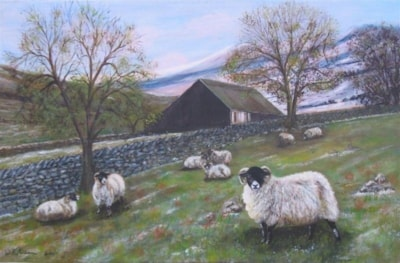Slow thaw in the Dales 2