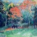 Autumn Blaze 2