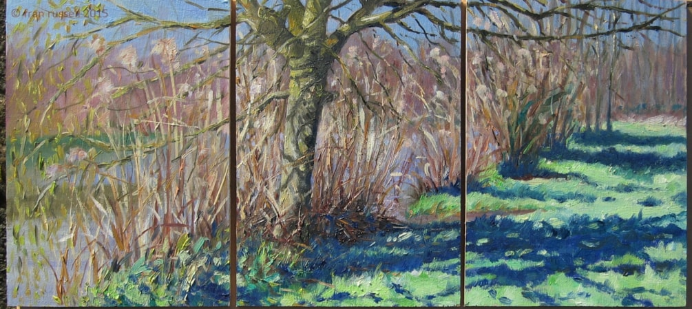 Winter Reeds & Willow (tryptic)