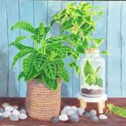 Foliage indoors