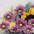 Rising Sun-flower :)