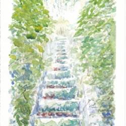 Steps at Brehemont