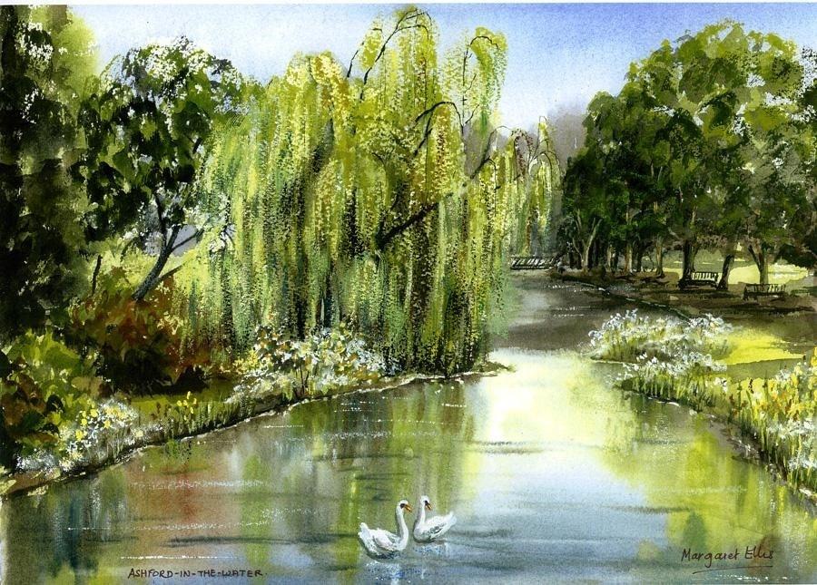 Willow tree at Ashford.