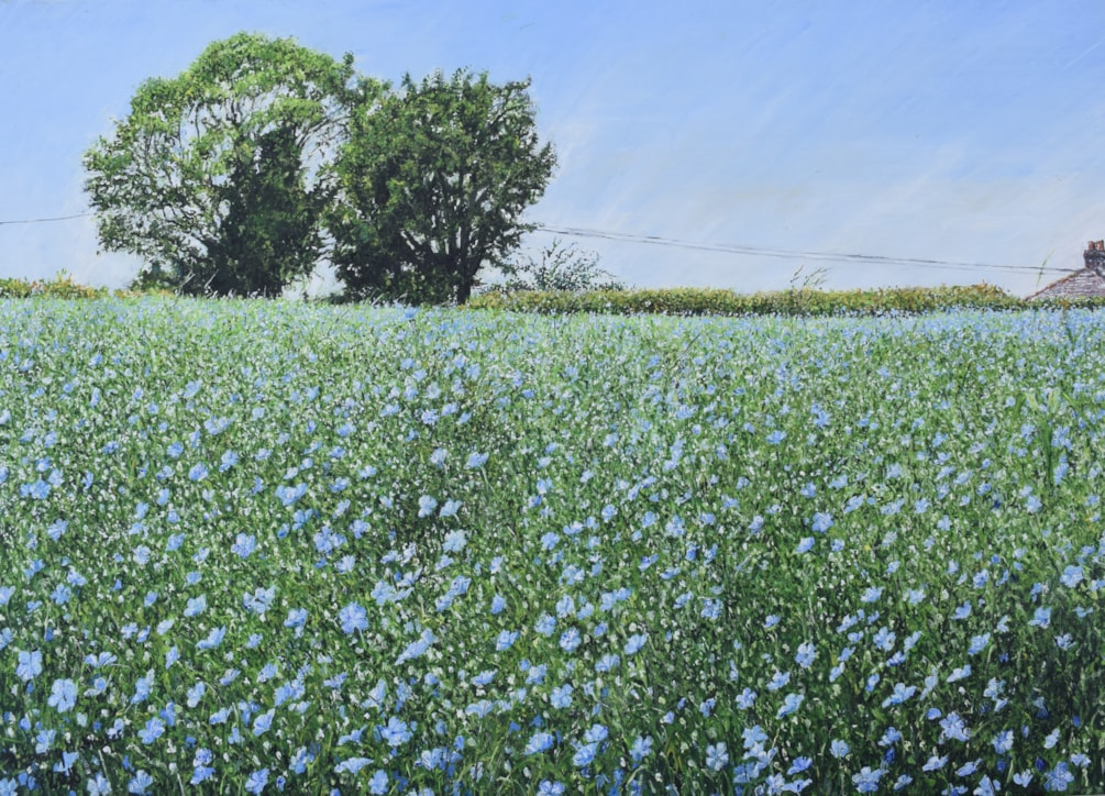 Flax Field Monmouthshire