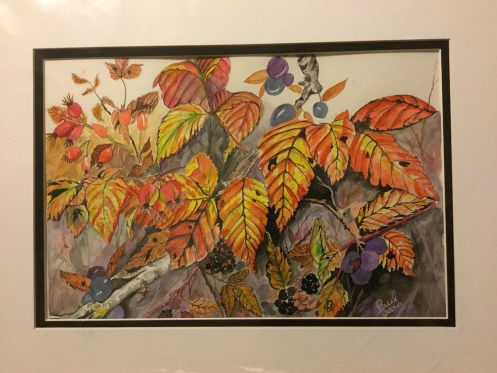 Autumn hedge