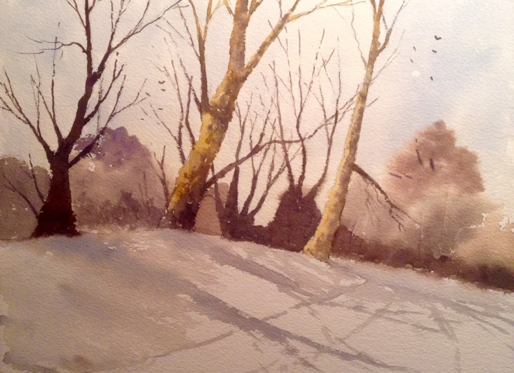 Shadows on a snowy bank (after Edward Wesson)