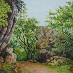 Dewerstone Rocks