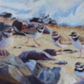Ringed Plovers at high tide - acrylic 14x10""
