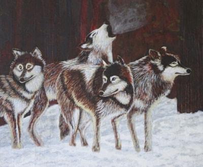 351 - Wolf Howl