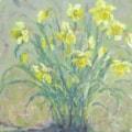 Daffodils in spring sunshine.