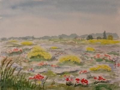 Mallorca Flower Meadow