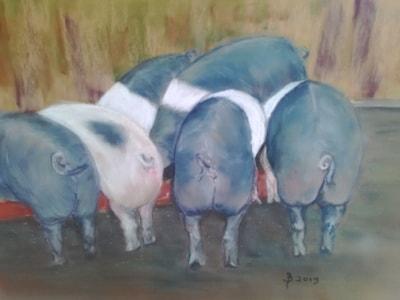 'Grubs up' oink! oink!