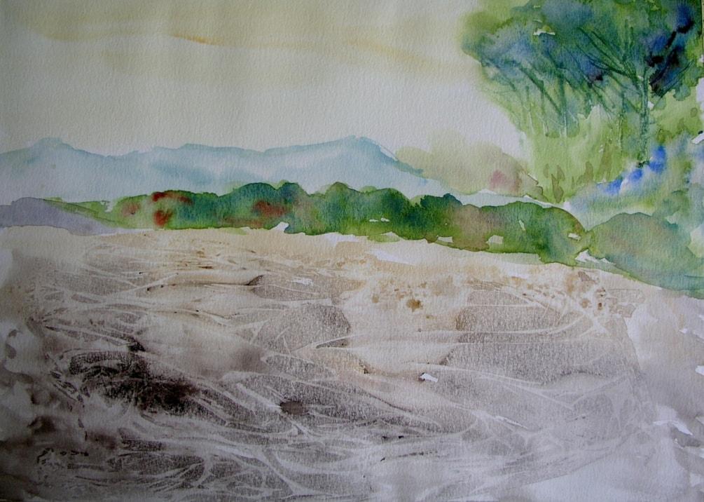 Pinewood on the beach
