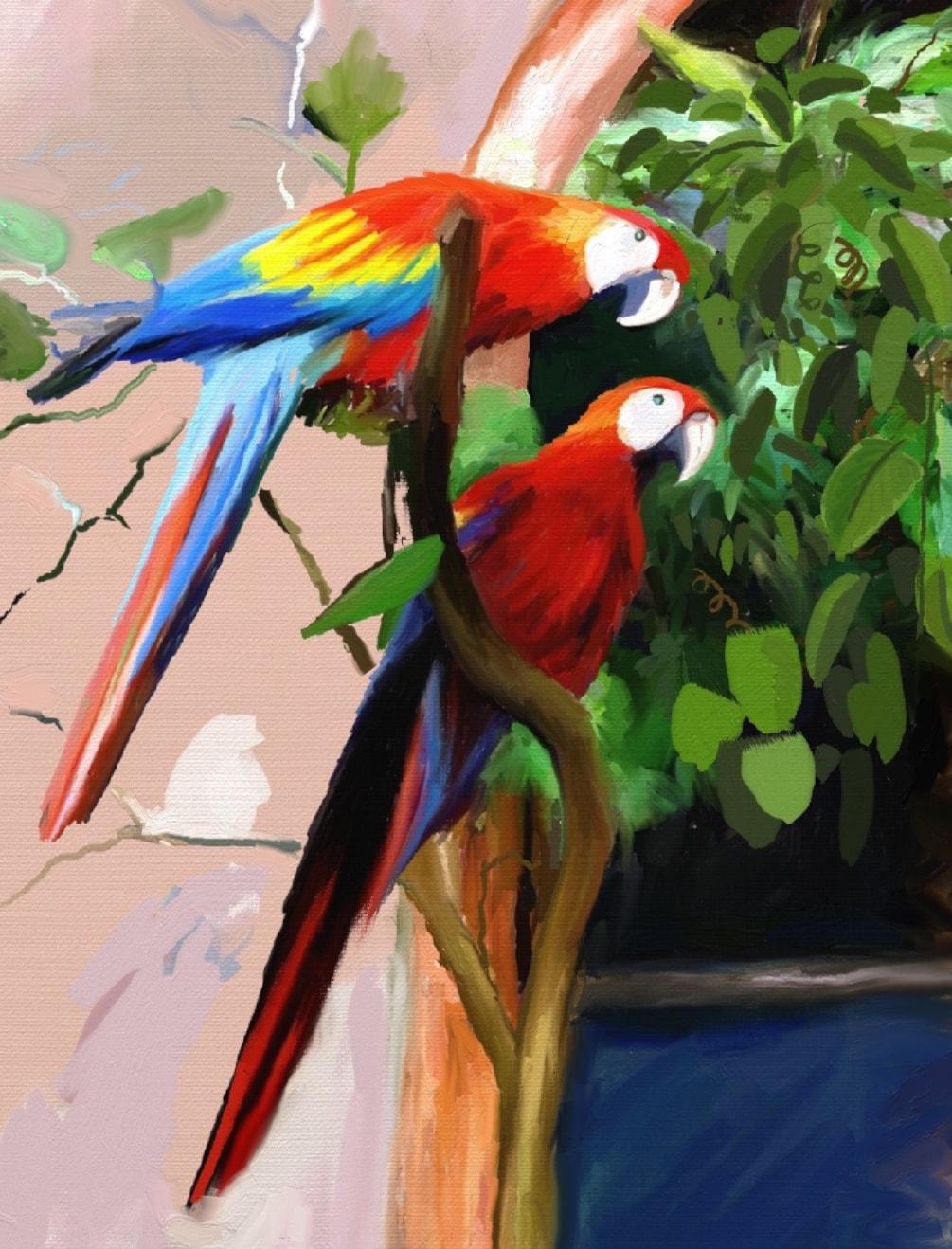 A Pair 'O Parrots