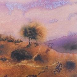 Little Exmoor Tree